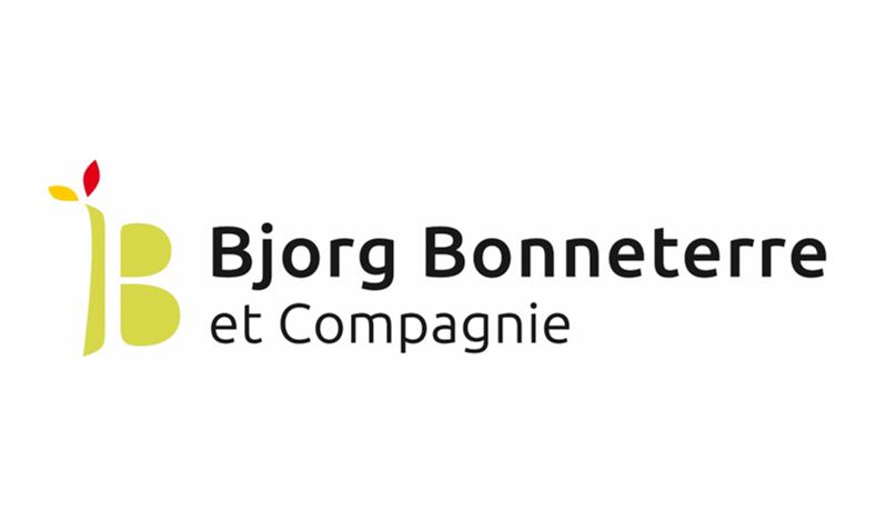 logo_bbcie
